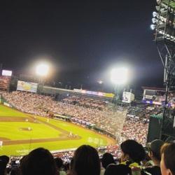 野球と花火とビール